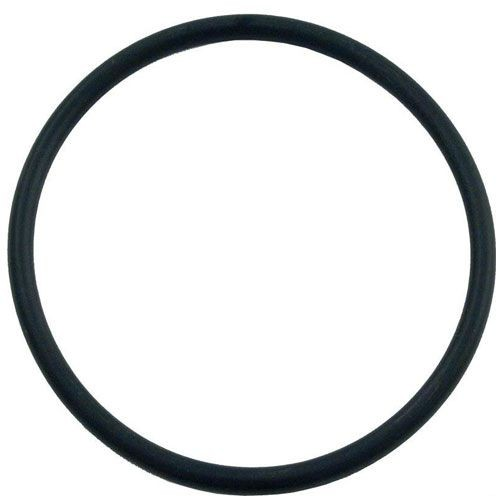 Hayward O-Ring for CL100 & CL110 Chlorinator CLX110K