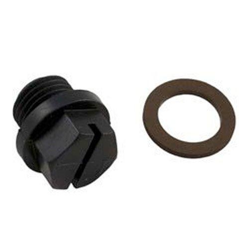 Hayward Pump 1/4 Inch Drain Plug & Gasket SPX1700FG