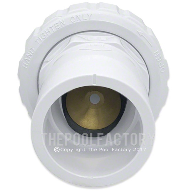 Hayward 1-1/2-Inch Socket Union Check Valve - Inside View