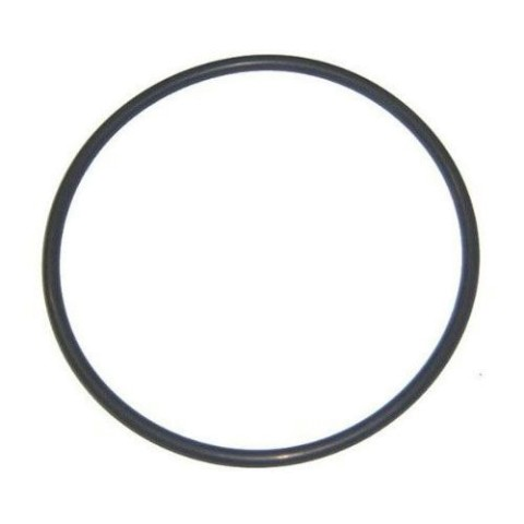 Hayward Easy-Clear Tank O-Ring CX400G
