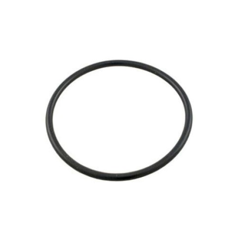 Hayward Power-Flo Pump Strainer Lid O-Ring SPX1500P