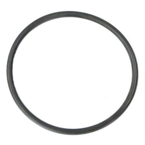 Hayward O-Ring Gasket for Micro Star-Clear Filter Tank CX120D