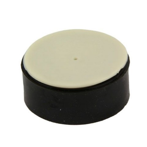 Pentair Clean & Clear Filter Check Valve Kit 51516100