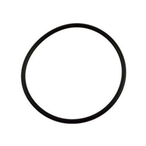 Pentair Optiflo Strainer Lid O-Ring 357255