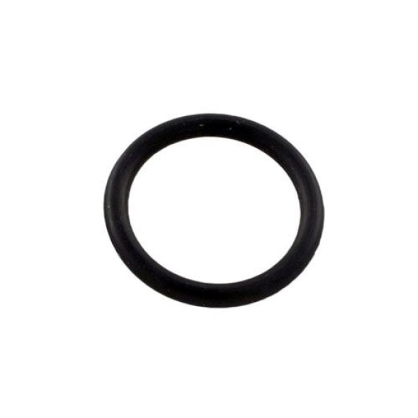 Pentair Optiflo Pump Drain Plug O-Ring 192115