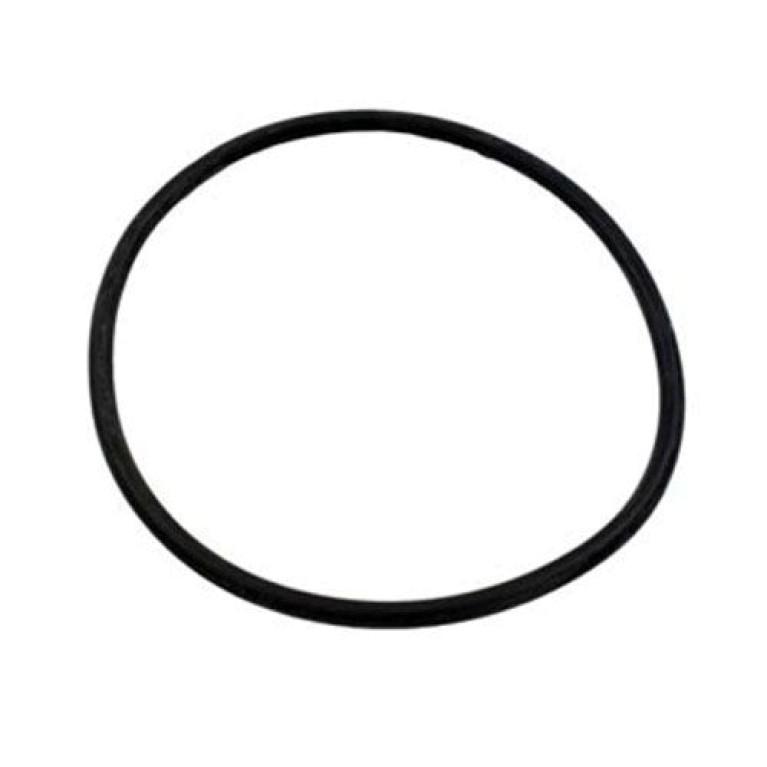 O-Ring For Aquapro PurFlo Strainer Lid