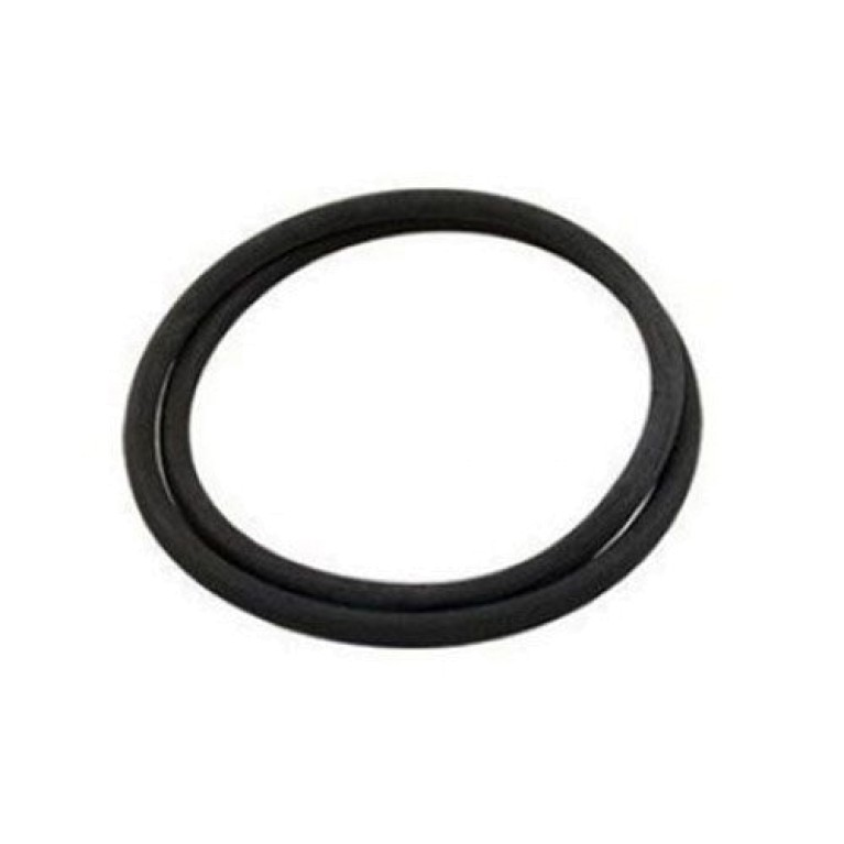 O-Ring For Clean & Clear Tank Body 87300400